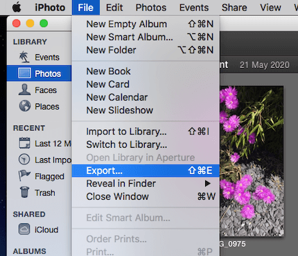 iPhoto File Export