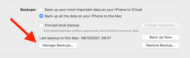 iPhone Manage Backups Button